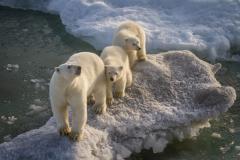 20-12-DSC-6715_Polar-Ambassadors_Rosemarie-Bisiar