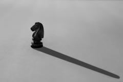 21-04-DSM-7555_The-Black-Knight_Terry-Hamilton